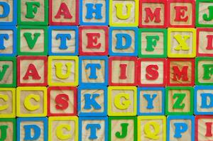 marital strain of autism, divorce rate, divorce trend, Illinois divorce lawyer