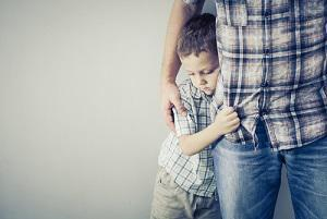 Illinois divorce attorney, Illinois family lawyer, Illinois child custody lawyer, comprehensive parenting plan,